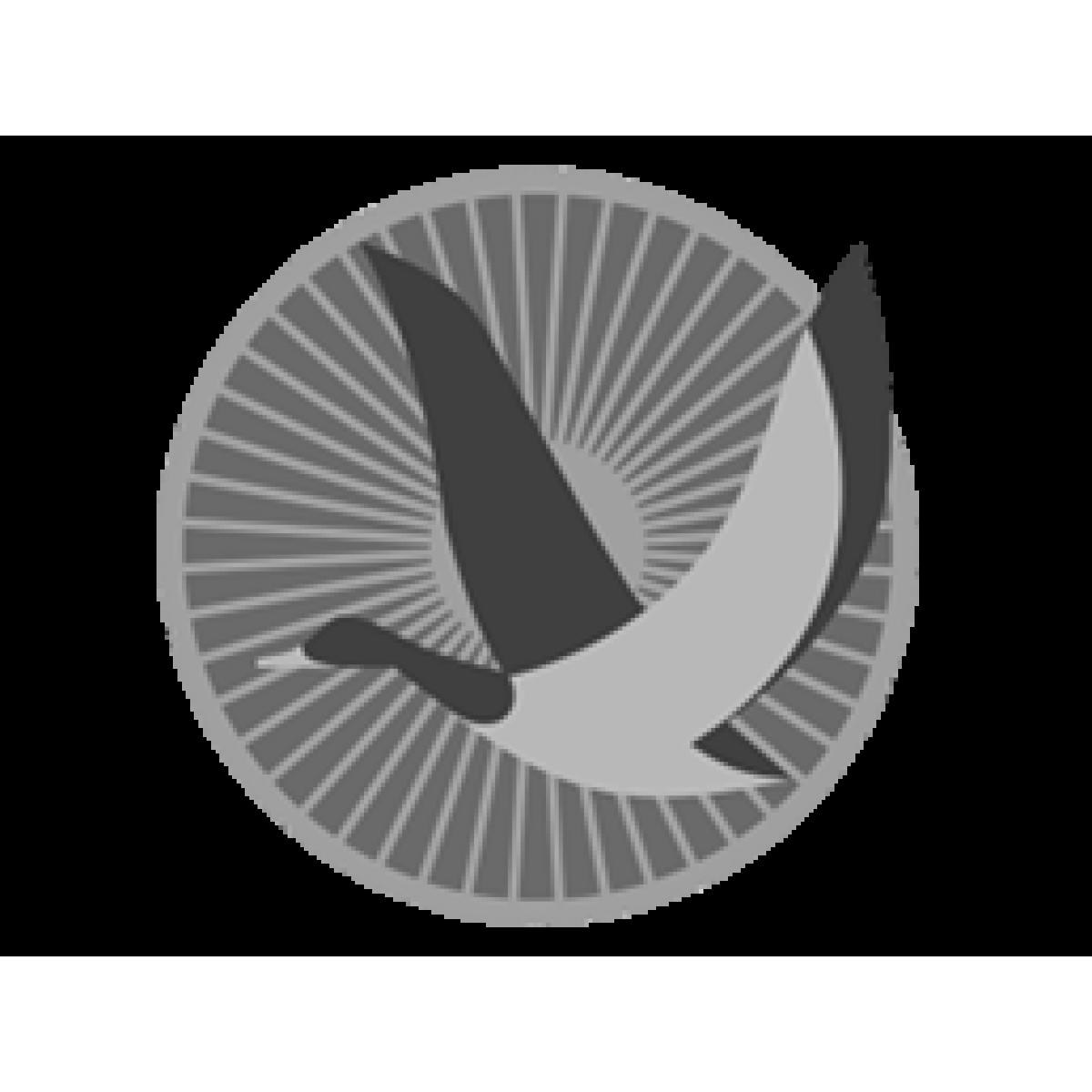 ПОЯСНАЯ КОБУРА ИЗ НАТУРАЛЬНОЙ КОЖИ С ОРИГИНАЛЬНОЙ ШЛЕВКОЙ ДЛЯ «ТТ» (14-21)